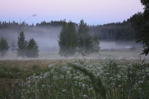 Sommernacht-624x416
